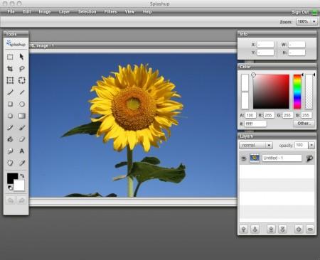splashup-online-bildbearbeitung-software1.jpg