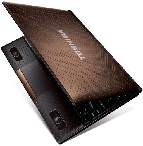 Netbook Testsieger Toshiba NB520-108